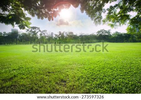 sun light over sky in beautiful green grass field of public park - stock photo