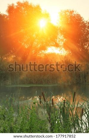 Sun rays on sunrise on the river - stock photo