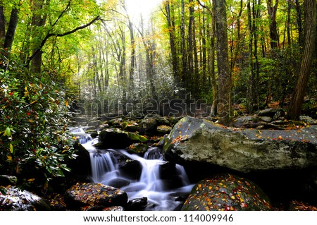 Sun rays shinning through the fall forest with a slow moving stream. - stock photo