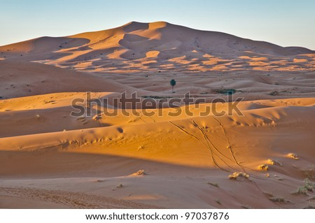 Sun rises over Erg Chebbi dunes at Morocco