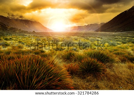 sun rising behind grass field in open country of new zealand scenery use as beautiful natural background - stock photo