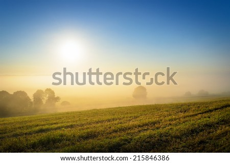 sun rising over the field covered with morning mist - stock photo