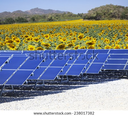 sun solar cell panels nad sunflowers field use as natural electric power and pure energy of nature source - stock photo