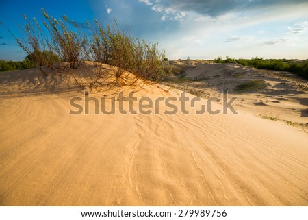 sun-warmed sands of the desert - stock photo