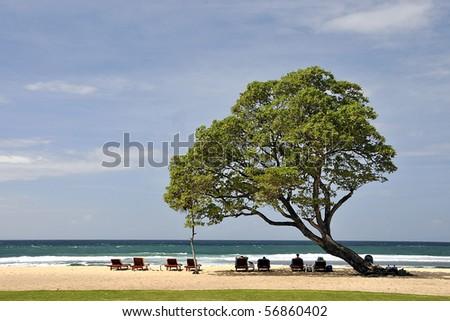 Sunbathers in Bali - stock photo