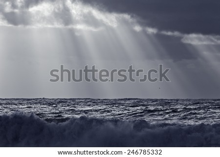 Sunbeams over sea at sunset. Black and white toned blue. - stock photo