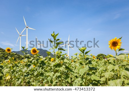 sunflower field and wind power , clean energy background