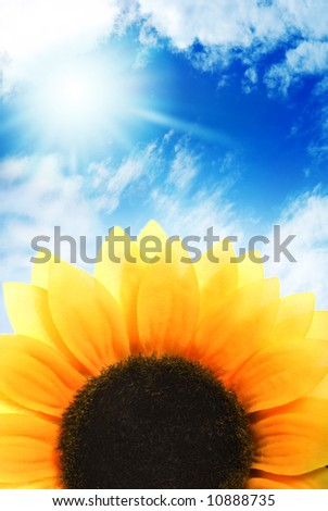 Sunflower over blue sky - stock photo