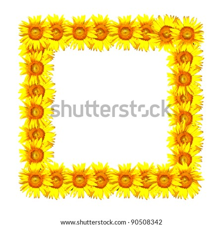 sunflower photo frame in square shape - stock photo