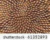 Sunflower seed pattern - stock photo