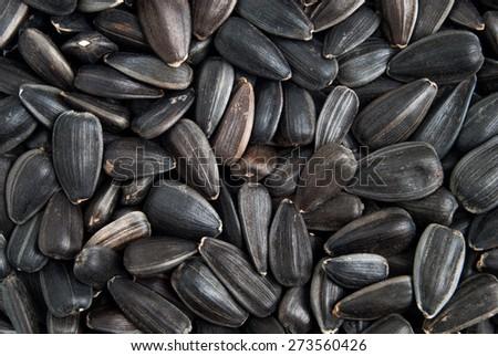 Sunflower seeds macro background - stock photo