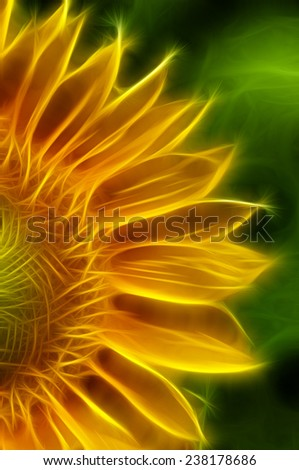 Sunflower with Fractalius Filter - stock photo