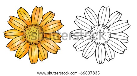 sunflower with stencil - stock photo