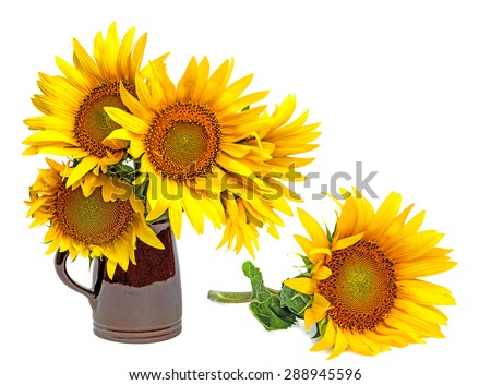 sunflowers in a vase - stock photo