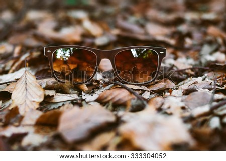 Sunglasses on autumn leaves in the forest - stock photo