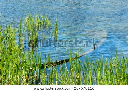 Sunken wooden boat fully submerged under water in the reeds. - stock photo