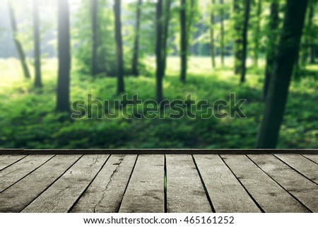 Sunlight in forest and wood planks floor. Beautiful nature background