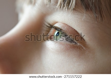 Sunlight reflected in the eyes of the young green - stock photo