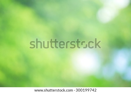 Sunny abstract green nature background,Blurred  background . - stock photo