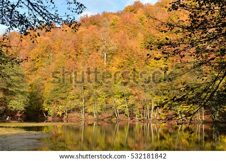 Sunny autumn day at Yedigoller National Park, Turkey