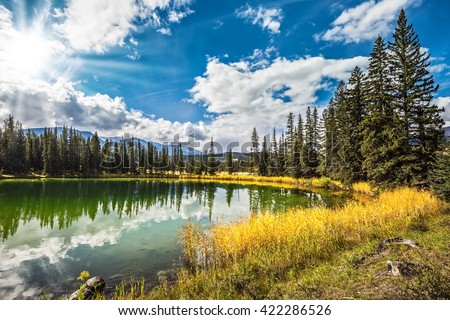 Sunny autumn day in Jasper National Park  in Canada. The small superficial lake is surrounded with coniferous forest and turned yellow bush - stock photo