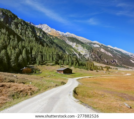 Sunny autumn day. Wide dirt road in an Alpine valley. The mountain slopes are covered with dense pine forest - stock photo