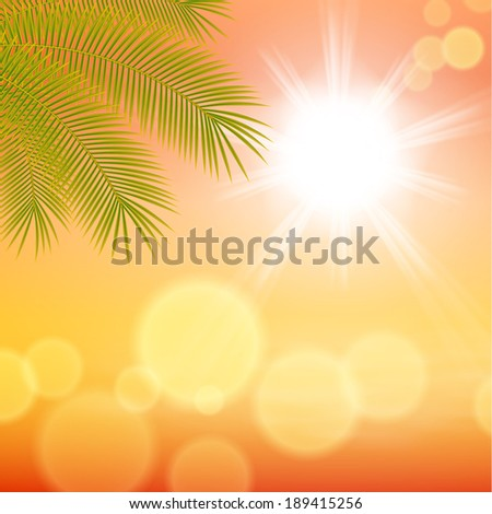 Sunny background with palm leaves. - stock photo