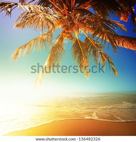 Sunny beach. Square composition. - stock photo