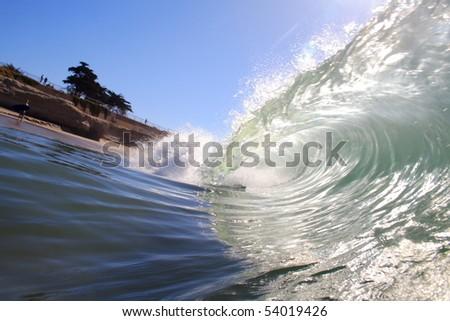 sunny curl - stock photo
