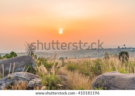 Sunny dawn in a countryside field. - stock photo