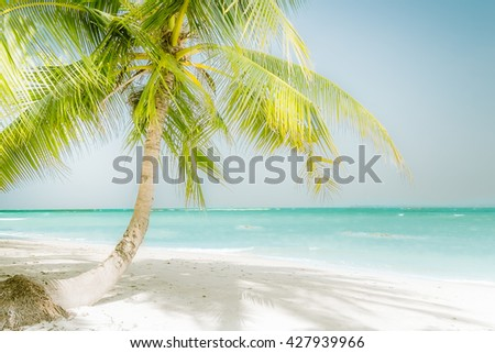 Sunny day at amazing tropical beach with palm tree, white sand and turquoise ocean waves. Myanmar (Burma) travel landscapes and destinations - stock photo
