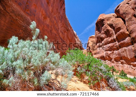 Sunny day in Arches Canyon. USA - stock photo
