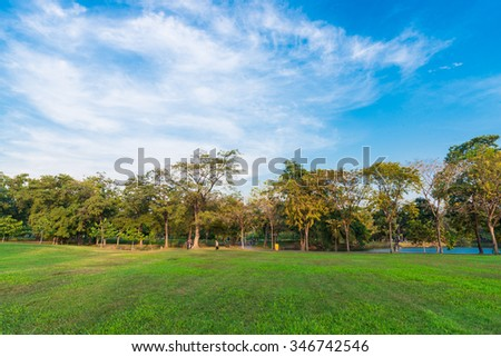 sunny day in park with blue sky, City park - stock photo