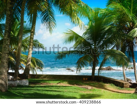 Sunny day, white cloud in the sky. Palm trees and tropical vegetation on the coast, paradise sandy beach and turquoise ocean. - stock photo
