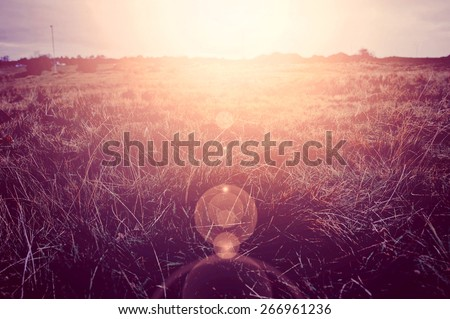 Sunny field at summer. Retro vintage instagram picture.. - stock photo