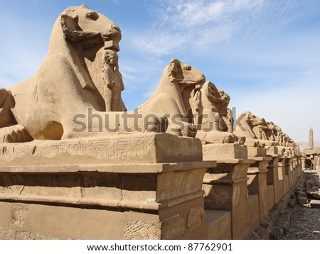 sunny illuminated scenery including lots of sphinxes in a row at the Precinct of Amun-Re in Egypt (Africa)
