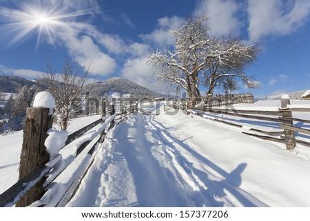 Sunny landscape in the mountain village. Winter morning. Iltsi village, Carpathian , Ukraine, Europe. - stock photo