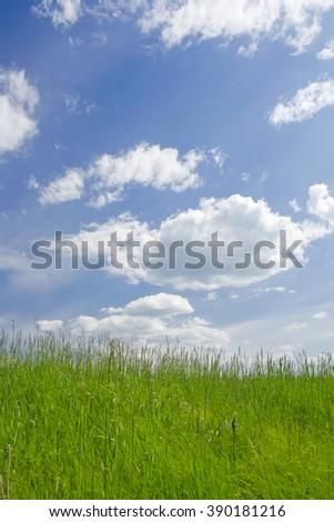 Sunny meadow and clouds - stock photo