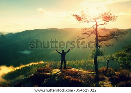 Sunny morning. Happy hiker with hands in the air stand on rock bellow pine tree. View over misty and foggy morning valley to Sun. - stock photo