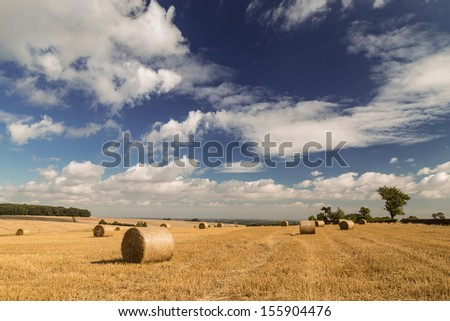 Sunny Sky & Hay Bales, Lincoln-shire wolds, Lincoln-shire, England. - stock photo