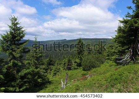 Sunny summer day in Krkonose mountains national park
