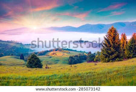 Sunny summer morning in the foggy Carpathian mountains. Borzhava ridge, Transcarpathian, Ukraine, Europe. Instagram toning. - stock photo