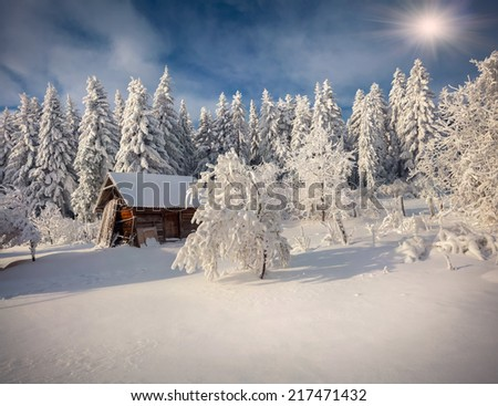 Sunny winter landscape in the mountain forest. Retro style - stock photo