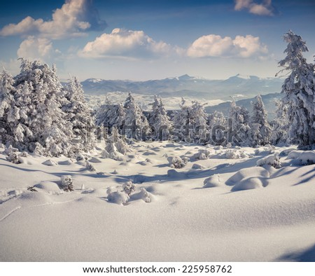 Sunny winter landscape in the mountains - stock photo