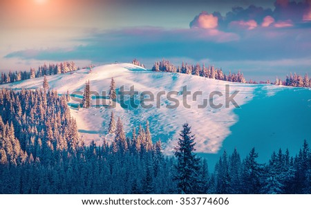 Sunny winter view of the Yagidna mountain in Ukrainian Carpathian. Frost and fresh snow covered fir trees at the morning mist. Instagram toning. - stock photo