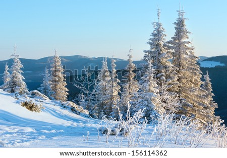 Sunrise and winter mountain landscape with snow covered trees on slope