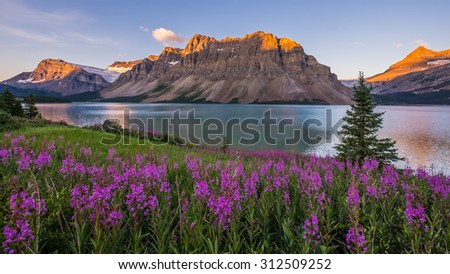 Sunrise at Bow Lake in Banff National Park. - stock photo