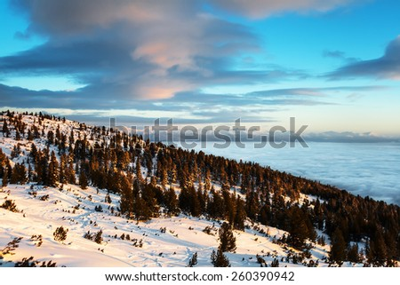 Sunrise at Snowy Mountain Slope With Forest and clouds inversion in the valley in front of a distant mountain silhouette  - stock photo