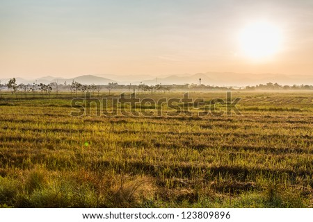 Sunrise behind the mountains in grass field and fog early morning time - stock photo