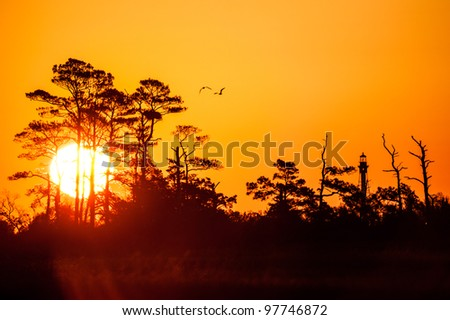 Sunrise, Birds, and the Cape Charles Lighthouse - stock photo